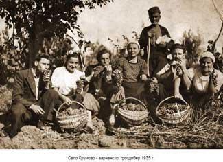 Село Крумово - варненско, гроздобер 1935 г.