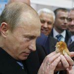 Авантюризмът на Путин